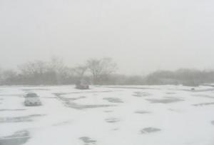 那須高原の初雪